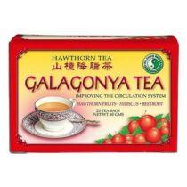 Dr. Chen Galagonya tea filteres 20 db